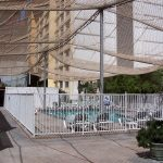 Netting over a rooftop swimming tool and deck keeps birds from nesting in shrubs.