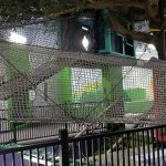 A rope bridge at The Building For Kids, Children's Museum.