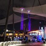 Debris barrier netting underneath The Hulk roller coaster at Universal Studios, Orlando Florida.