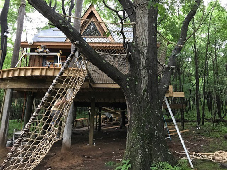 A climbing net leading up to a treehouse.