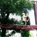 Children playing on a rope bridge.