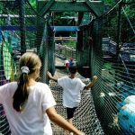 A rope bridge is a fun things for playground areas and amusement parks.