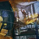 Children playing in a netted maze.